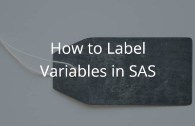 How to Label Variables in SAS